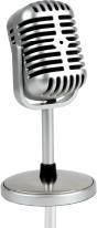 Spot audio