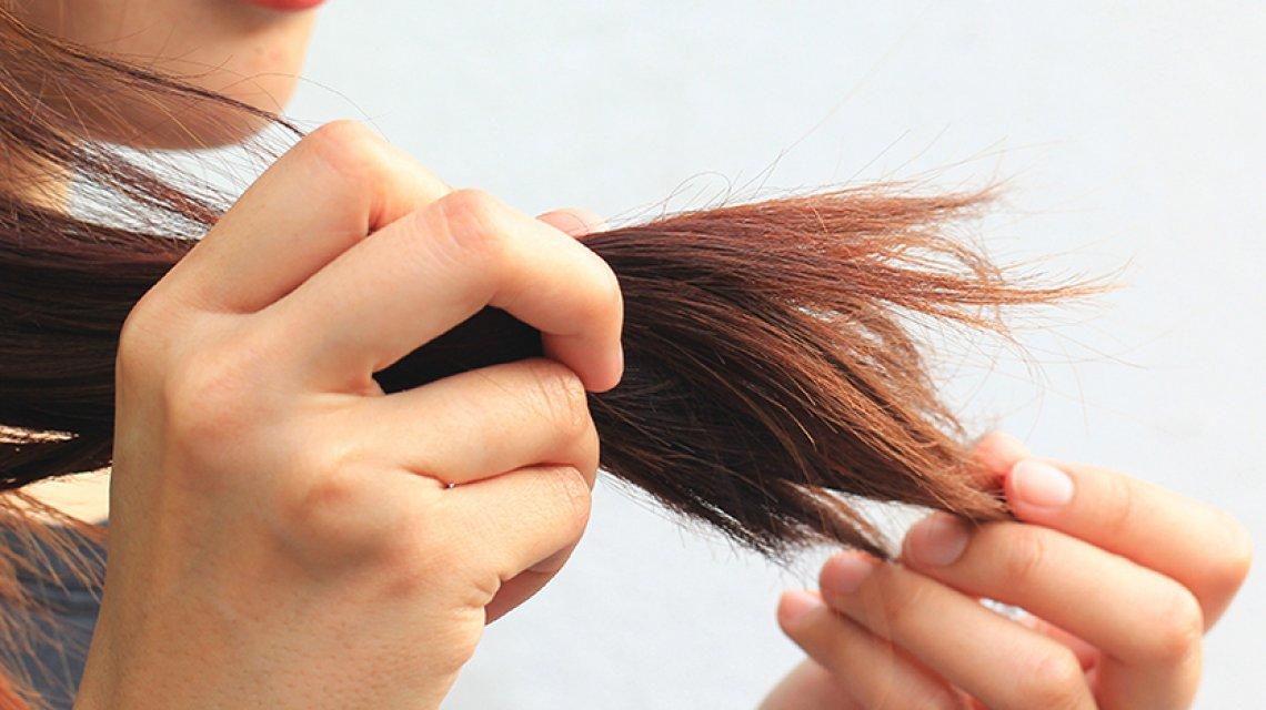 struttura del capello