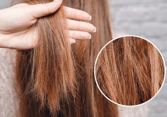 Studio del capello: i capelli secchi, cause e rimedi